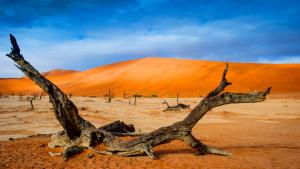 Frank Späth LUMIX PHOTO ADVENTURE NAMIBIA